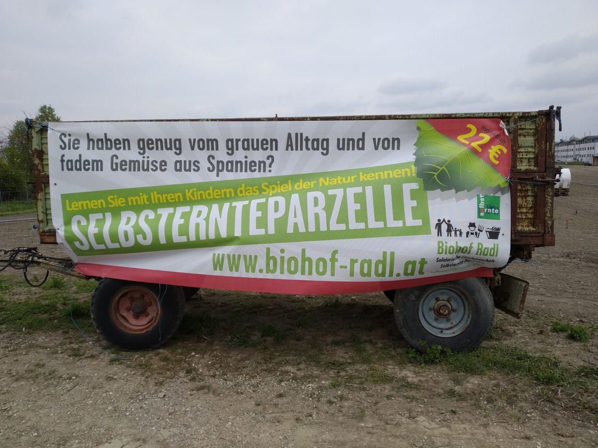 Urban Gardening in Wien: Bio Selbsternte Parzelle vom Biohof Radl (Plakat)